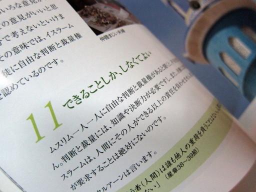IMG_4661_1.JPG