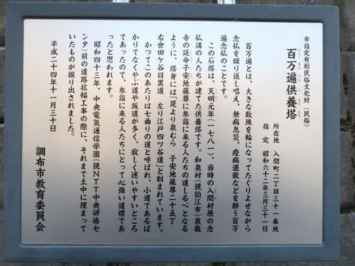 IMG_8653_1.JPG