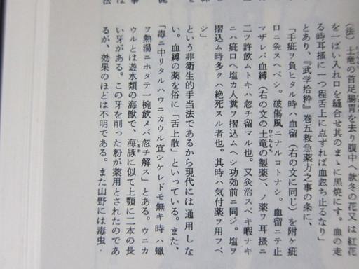 201108ichijikikoku 008.jpg