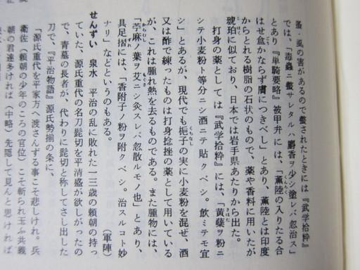 201108ichijikikoku 009.jpg