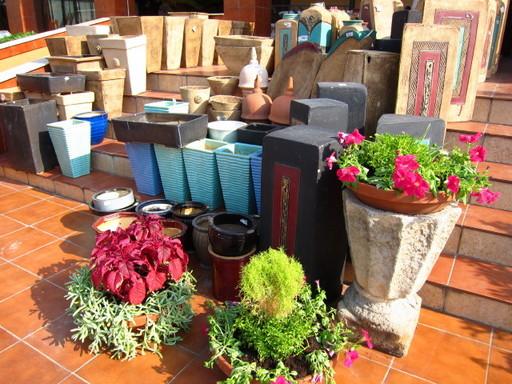 20110907 flower shop 041.jpg