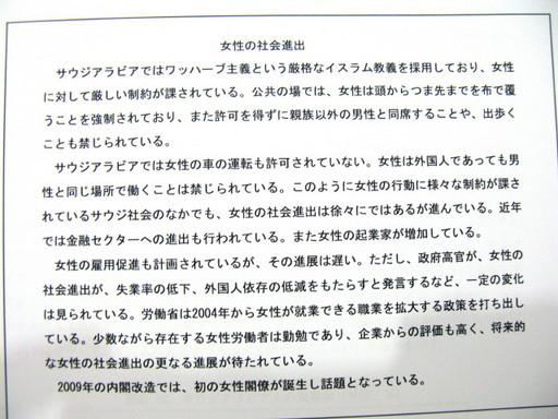 20111118 fal.jpg