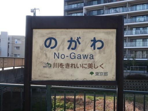 IMG_8661_1.JPG