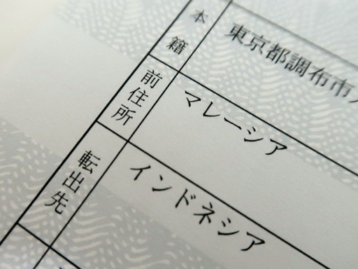 IMG_8768_1.JPG