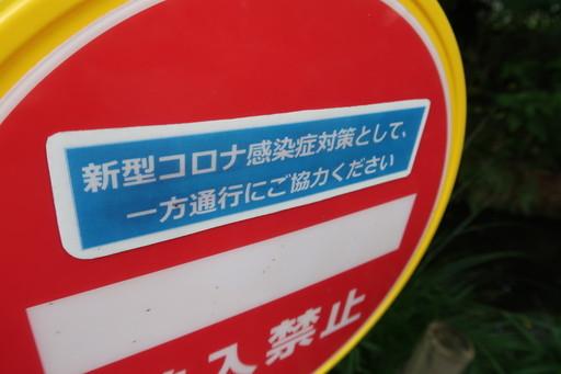 IMG_9630_1.JPG