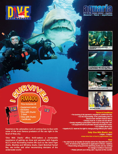 aquariaklcc_products_content_popup_dive_with_sharks[1].jpg